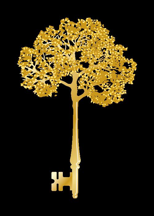 avain-terveyteen-treekey